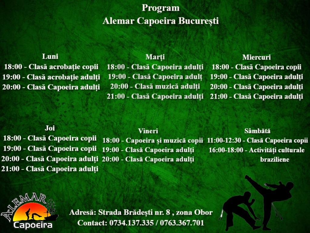 program Alemar 1
